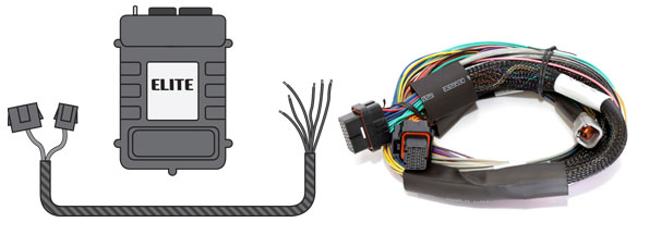 Haltech – Engine Management Systems » Blog Archive 6 Ways to Wire on