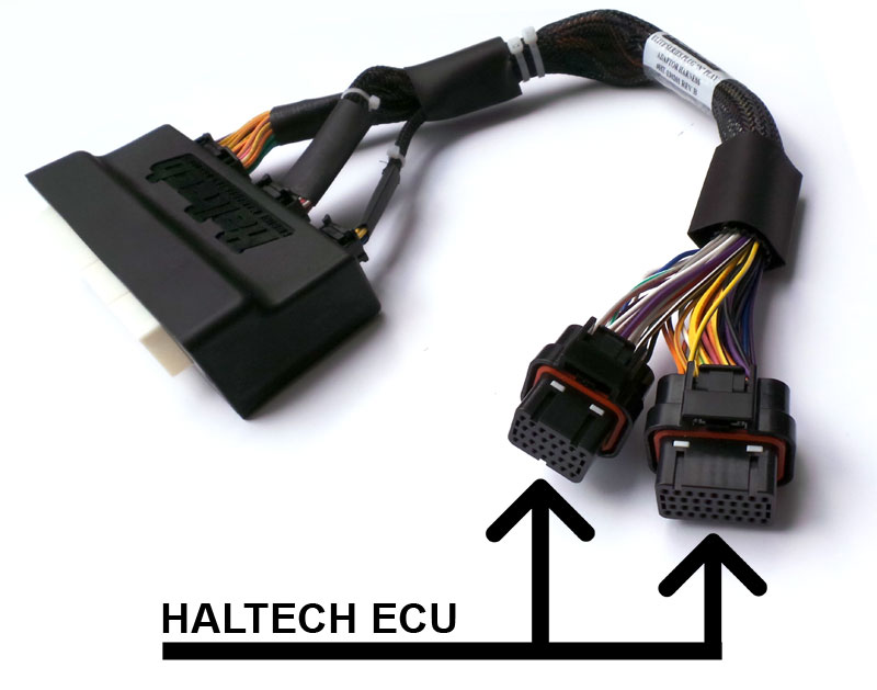 Haltech – Engine Management Systems patch harness Archives