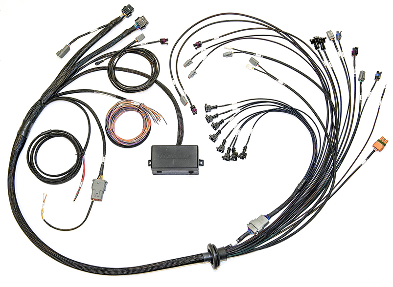 HT 141376 Elite 25002500 T V8 Big BlockSmall Block GM Ford Chrysler Terminated Harness Only 1 1 haltech engine management systems harness archives haltech Ford Wiring Harness Kits at edmiracle.co